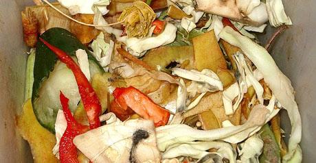 rifiuti cibo organici - spreco alimentare