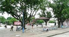 parco verde urbano - città giardini