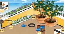 Estate/La guida all\'irrigazione a goccia - Verdecologia