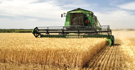 agricoltura-trebbiatrice-grano