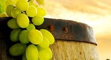 botte di vino - uva