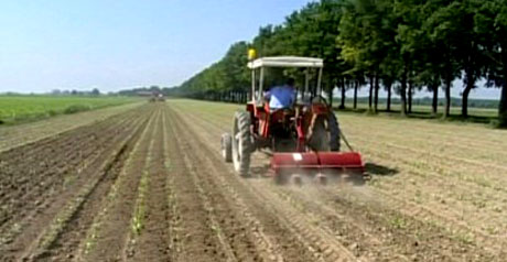 terre giovani agricoltura
