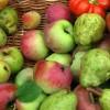 frutta e ortaggi brutti