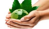 pianeta - ambiente - green - terra - mani - mondo