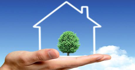 eco casa - green