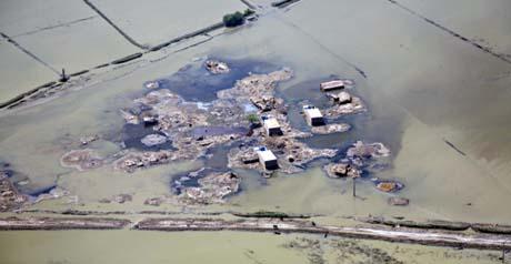 disastro ambientale - Fao