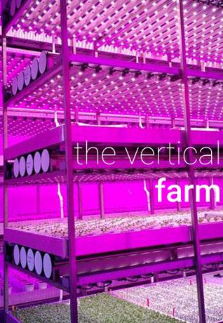 Vertical Farm - agricoltura verticale