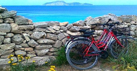 turismo natura vacanza ambiente biciclette