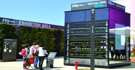vertical farm enea agricoltura