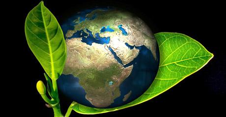 mondo verde green terra