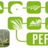 carta certificata PEFC