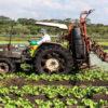 insetticida - agricoltura
