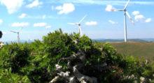 eolico - energia eolica
