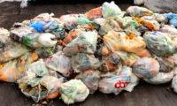 rifiuto organico - rifiuti