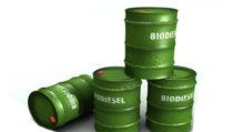 biodiesel - bidoni carburante